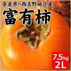 富有柿 奈良県産 6.6kg箱 2Lサイズ 24個入り 柿 かき カキ 果物 フルーツ お取り寄せ お土産 ギフト プレゼント 特産品 名物商品 お歳暮 御歳暮