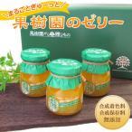 熊本県 無添加 果樹園のゼリー 8本セット お歳暮 お土産 ギフト