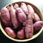 酵素紫芋 パープルスイートロード 4kg お取り寄せ お土産 ギフト プレゼント 特産品 名物商品 ホワイトデー おすすめ