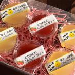 フルーツこんにゃくゼリー詰合せセット 6個入り 栃木県 お取り寄せ お土産 ギフト プレゼント 特産品 名物商品 お中元 御中元 おすすめ