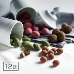 ホシフルーツ マリアージュショコラ 12袋 スイーツ 洋菓子 チョコ お取り寄せ お土産 ギフト プレゼント 特産品 名物商品 お歳暮 御歳暮
