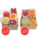 ホシフルーツ おまかせ旬のフルーツBOX D フルーツ 果物 くだもの お取り寄せ お土産 ギフト プレゼント 特産品 名物商品 母の日 おすすめ