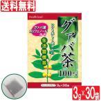 グァバ茶 100% ティーバッグ 3g×30袋 �