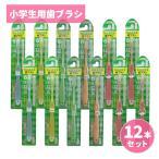 Yahoo!わごんせる歯ブラシ 子供用歯ブラシ ふつ う 6才以上 Dr.デンリスト お得 な12本セット
