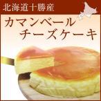 チーズケーキ 北海道十勝産カマンベールチーズケーキ スイーツ ケース入り お菓子 スイーツ
