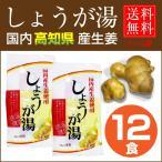 ヘルスリード しょうが湯 12袋セット(15g×6袋×2個) 国内産 高知県産 生姜使用「メー...