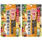 酵素 ダイエット サプリ 100種の植物発酵エキス粒 62粒 2個セット