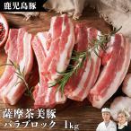 国産 豚 ブランド 豚肉 豚バラ 九州産 ブロック 塊
