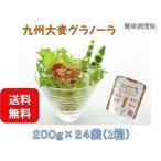 グラノーラ 西田精麦 九州大麦グラノーラ 200g×24袋(2箱)