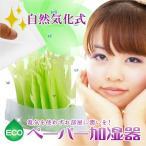 ペーパー加湿器 エコガーデン まるで観葉植物 電気不要 気化式加湿器