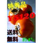 産地直送 和歌山の柿 特秀品 まとめてお得 約4キロ(9玉×2)