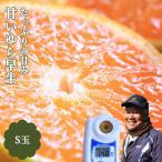 みかん 約5kg S玉 ゆら早生 高糖度 濃いみかん 箱買い 紀南ミカン 和歌山県産 甘い 極早生 産直 送料無料