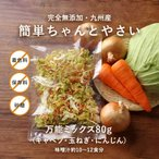 九州産 完全無添加 簡単ちゃんとやさい 万能ミックス 80g 乾燥野菜 キャベツ にんじん 玉ねぎ メール便A TSG