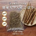 九州産 簡単ちゃんとごぼう 完全無添加 50g 乾燥野菜 メール便A TSG