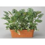 光触媒加工の人工観葉植物。御祝いのギフトに大人気!