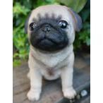 犬の置物 パグ いぬ イヌ 動物 8QY オーナメント ガーデン オブジェ 庭 雑貨 ガーデニング インテリア 雑貨 マスコット
