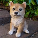 犬の置物 柴犬子犬 39QY いぬ イヌ 動物 オーナメント ガーデン インテリア 雑貨 置物 庭 ガーデンマスコット 雑貨小物