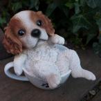 犬の置物 ティーカップキャバリア いぬ イヌ 動物 58QY オーナメント ガーデン オブジェ 庭 雑貨 ガーデニング インテリア マスコット ティー