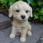 犬の置物 プードル いぬ イヌ 動物 T14065 オーナメント ガーデン オブジェ 庭 雑貨 ガーデニング インテリア 雑貨 マスコット