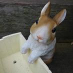 うさぎの置物 ハンギングラビット ルル 3639-02MB ラビット 兎 オーナメント ウサギ ラパンオーナメント オブジェ ガーデン ガーデニング
