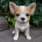 犬の置物 チワワ いぬ イヌ 動物 1230QYL オーナメント ガーデン オブジェ 庭 雑貨 ガーデニング インテリア マスコット リアル 陶器