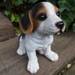 ショッピングオーナメント 犬の置物 ビーグル いぬ イヌ 動物 3702-02 オーナメント ガーデン オブジェ 庭 ガーデニング インテリア 雑貨 マスコット リアル 陶器