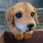 犬の置物 ミニチュアダックス ハンギングドッグ 3704-02 いぬ イヌ 動物 オーナメント ガーデン オブジェ 庭 雑貨 ガーデニング インテリア