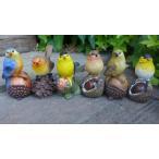 小鳥の置物 木の実乗り小鳥6羽セット 6064HT 鳥 とり 動物 オーナメント インテリア ガーデン オブジェ 庭 雑貨 ガーデニング 雑貨 マス