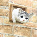 猫の置物 サバトラ猫 トンネル 120QY キャット ガーデンオブジェ ねこの置物 動物 オーナメント ネコ 雑貨 ガーデン オブジェ ガーデニング