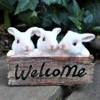 うさぎの置物 ウエルカムラビット N13668 動物 オーナメント ガーデン オブジェ ガーデニング インテリア 雑貨 ディスプレイ 庭 玄関 ウサギ