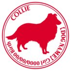 コリー 犬 ステッカー Cパターン