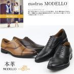 マドラスモデーロ madras  DM1514