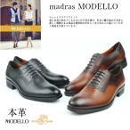 マドラスモデーロ madras  DM5054