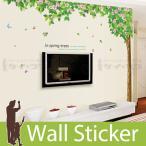 ウォールステッカー 壁 木 花 緑木と蝶 2枚セット 貼ってはがせる のりつき 壁紙シール ウォールシール 植物 木 花