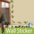ウォールステッカー 葉 [エバーグリーンアイビー] ルームメイツ RoomMates 壁紙シール 貼ってはがせる のりつき ウォールシール