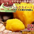 シルクスイート さつまいも 約5kg 千葉県・茨城県産 お得用 家庭用限定 産地箱入り 滑らかな食感と溢れんばかりの甘さ! キュアリングプレミアム 貯蔵