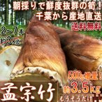 【産地直送・1〜3営業日出荷】 孟宗筍 もうそうだけ 生たけのこ 約3kg 2〜7本 千葉県産 無農薬栽培の竹の子!朝一番で収穫した新鮮な筍を米ぬか同梱で直送