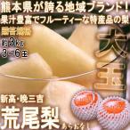 荒尾梨 あらおなし 新高・晩三吉 約3kg 3〜6玉 熊本県・荒尾産限定 贈答規格 大玉サイズ 地域ブランドの高品質な特産品!爽やかな甘さとジューシーな食感