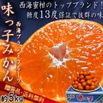 味っ子 西海みかん 約5kg 長崎県産 贈答規格 JAながさき西海 光センサー選果品 糖度13度保証・農園指定のギフト蜜柑!トップブランドの高級フルーツ