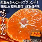 味っ子 西海みかん 約2kg 長崎県産 贈答規格 JAながさき西海 光センサー選果品 糖度13度保証・農園指定のギフト蜜柑!トップブランドの高級フルーツ