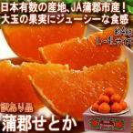 蒲郡せとか 約4kg L〜4L 大玉中心 愛知県産 訳あり品 JA蒲郡市 家庭用 日本有数の大産地、蒲郡の柑橘をお届けします!