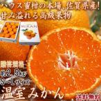 温室みかん ハウス栽培 約2.5kg S〜Lサイズ 佐賀県産 贈答規格 化粧箱入り 美しい果皮と高糖度の高級みかん! ハウス蜜柑の聖地、佐賀のミカン