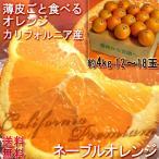ネーブルオレンジ アメリカ カリフォルニア産 糖度抜群 約4kg 食べるオレンジジュース