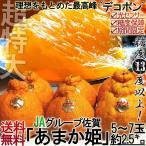 デコポン 佐賀県産 あまか姫 2.5kg 秀品 贈答用 ギフト 糖度13度以上 光センサー 認証 でこポン 温室 加温 不知火種の誇る最高峰位