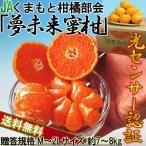 みかん 熊本 夢未来 JAくまもと柑橘部会 10kg〜9kg箱 温州ミカン 光センサー選別 糖度11度以上 Lサイズ〜2Lサイズ
