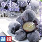 冷凍ぶどう 黒ブドウ限定 約1kg 品種混合 冷凍便配送 全国から取り寄せた旬の葡萄を用いた冷凍フルーツ!