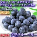 完熟ブルーベリー 約100g×6パック M〜2Lサイズ 長野県産中心 贈答規格 旬の産地で育てた甘み豊かな国産ブルーベリーをお届け!
