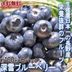 深雪ブルーベリー 約100g×6パック M〜2Lサイズ 長野県産 JAながの 贈答可能 雪国で育てた甘み豊かな国産ブルーベリーをお届け!