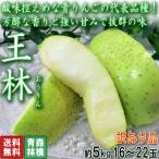 王林 おうりん 約5kg 16〜22玉 青森県産 訳あり品 糖度センサー選果済み 酸味控えめで高糖度の青りんご!出荷量トップクラスの人気品種