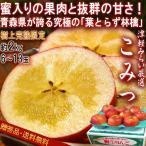 こみつ 樹上完熟りんご 葉とらず栽培 約2kg 6〜13玉 青森県産 贈答規格 JA津軽みらい 小玉の果実に溢れる蜜と濃厚な味!高徳を厳選したブランド林檎